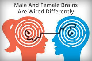 how men and women are different